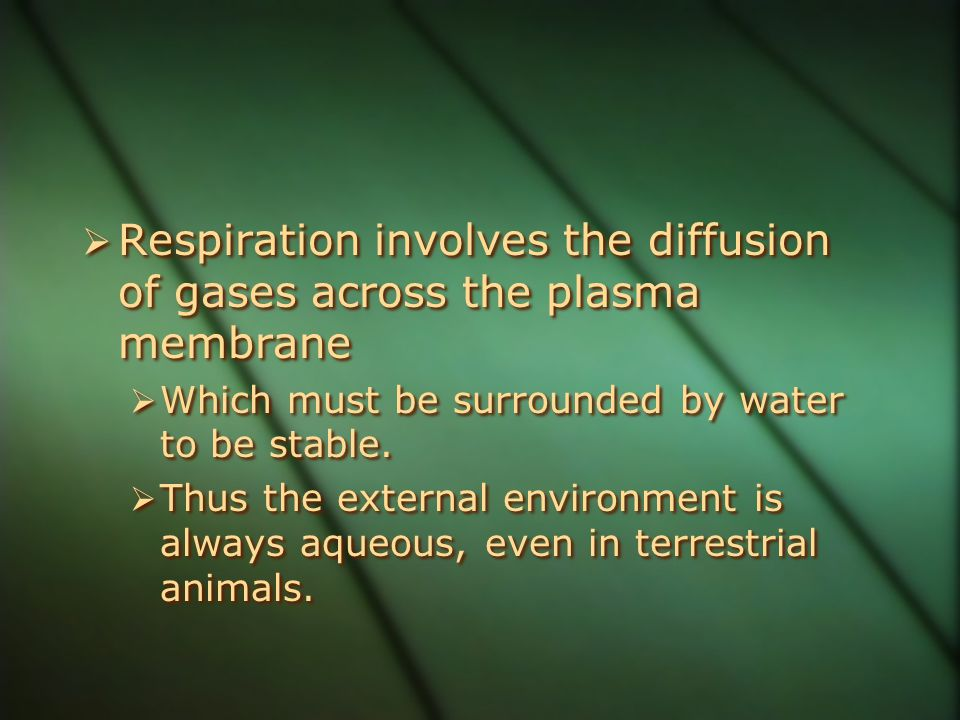 Respiration involves the diffusion of gases across the plasma membrane