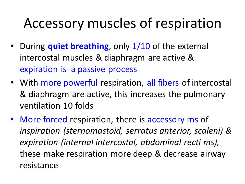 Accessory muscles of respiration