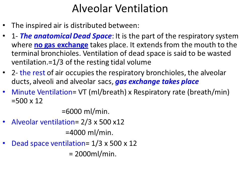 Alveolar Ventilation The inspired air is distributed between: