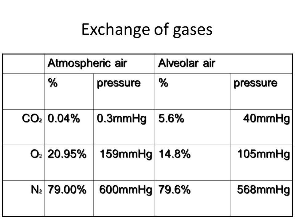 Exchange of gases Alveolar air Atmospheric air pressure % 40mmHg 5.6%