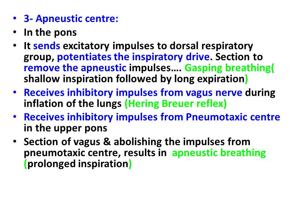 3- Apneustic centre: In the pons.