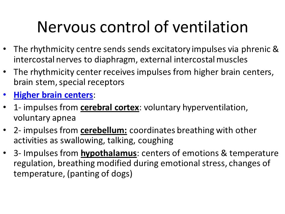Nervous control of ventilation