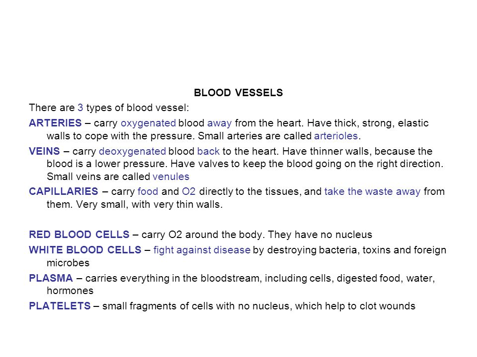 BLOOD VESSELS There are 3 types of blood vessel: