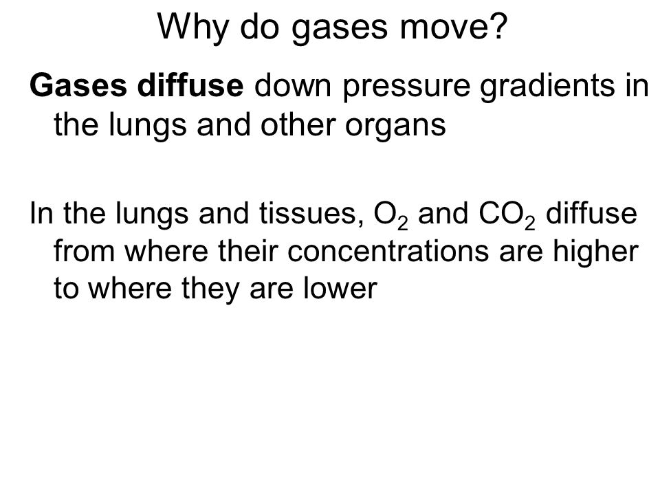 Why do gases move Gases diffuse down pressure gradients in the lungs and other organs.