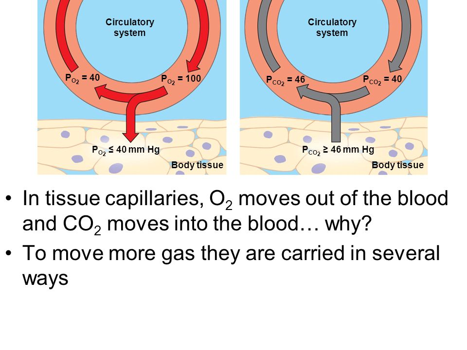To move more gas they are carried in several ways