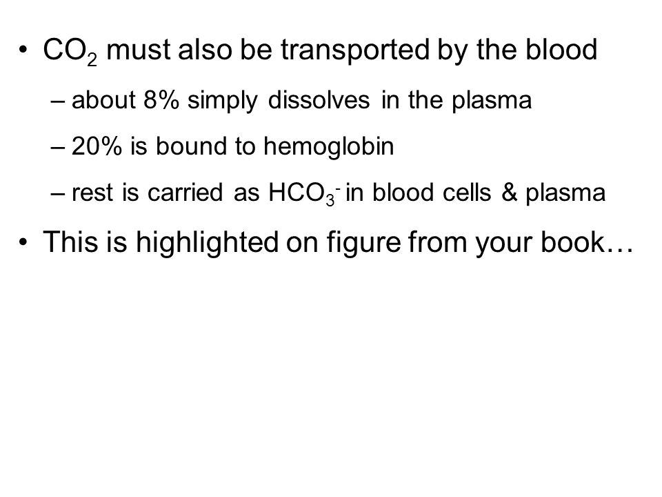 CO2 must also be transported by the blood