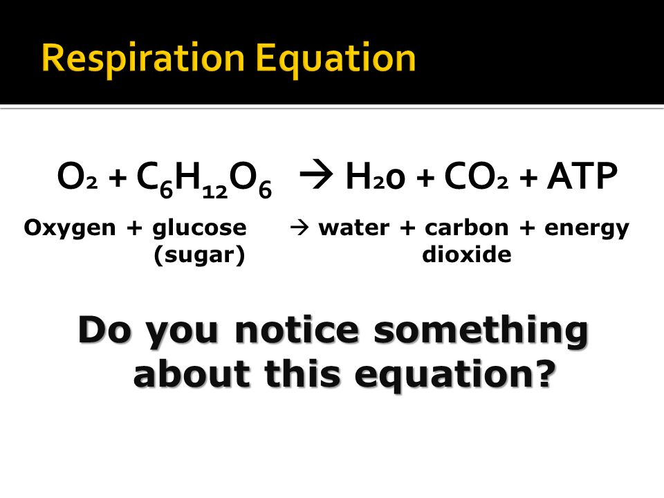 Do you notice something about this equation