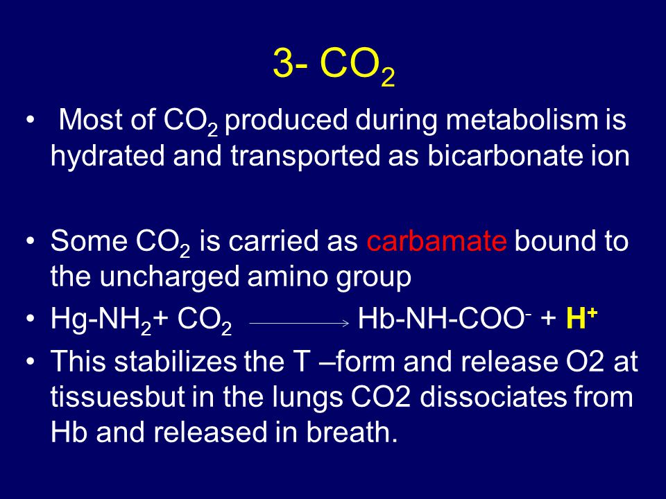 3- CO2 Most of CO2 produced during metabolism is hydrated and transported as bicarbonate ion.