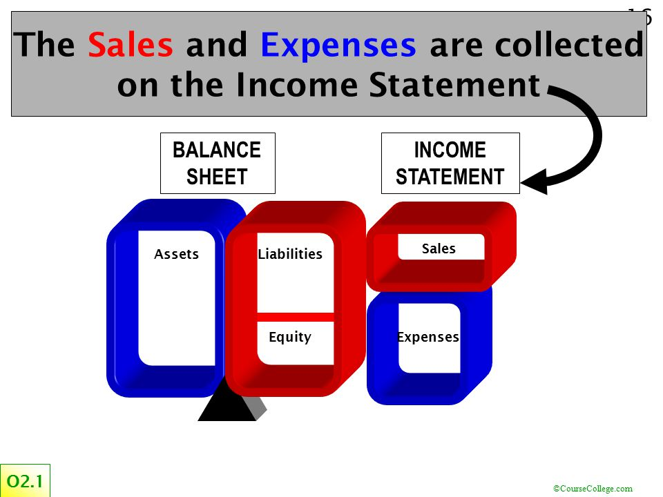 The Sales and Expenses are collected on the Income Statement
