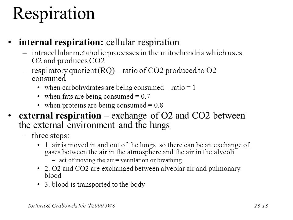 Respiration internal respiration: cellular respiration