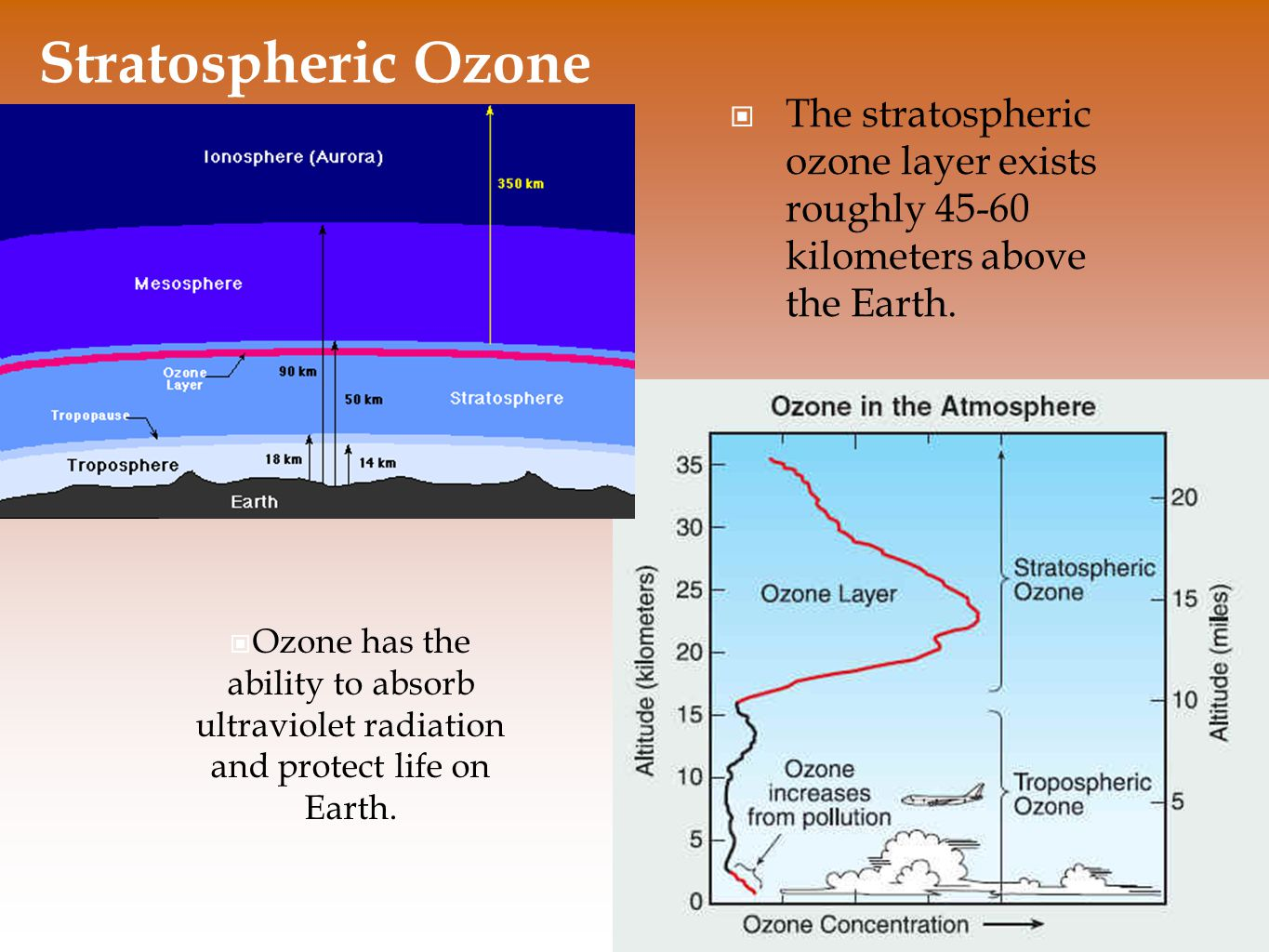 Stratospheric Ozone The stratospheric ozone layer exists roughly 45-60 kilometers above the Earth.