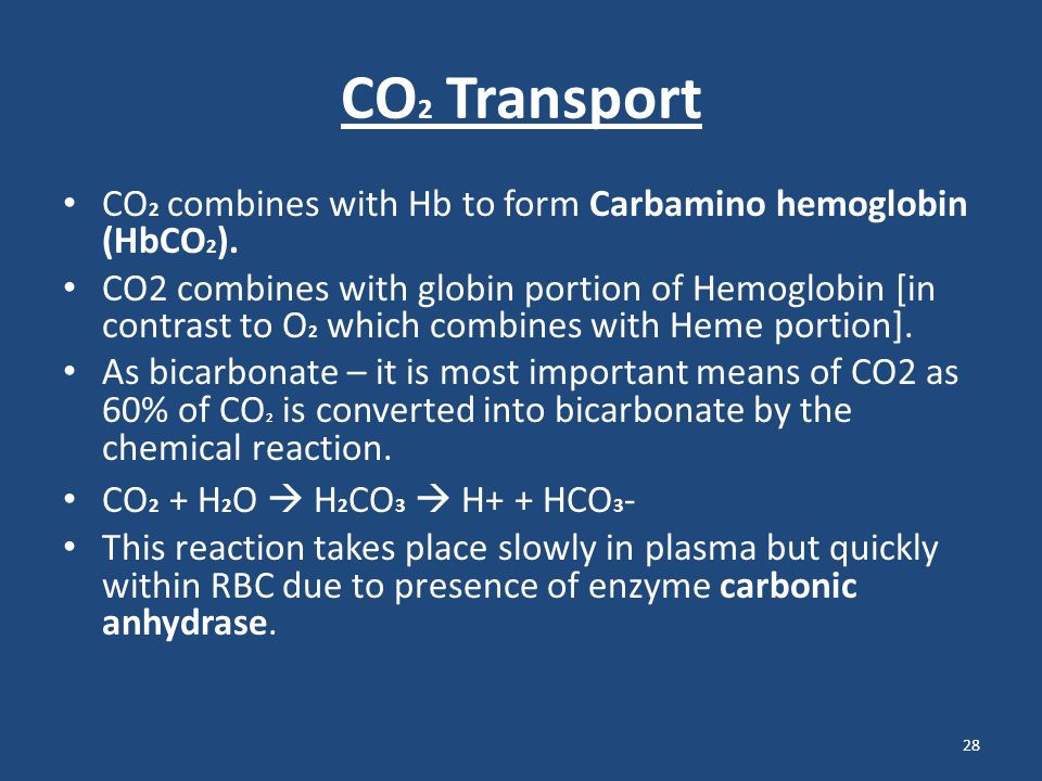 CO2 Transport CO2 combines with Hb to form Carbamino hemoglobin (HbCO2).