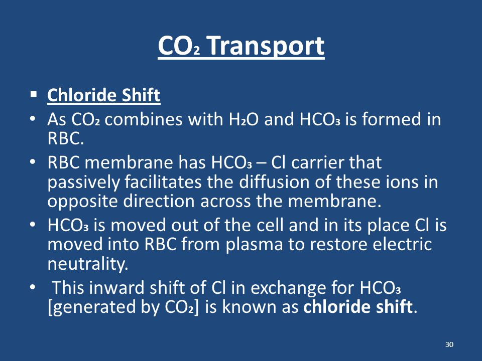 CO2 Transport Chloride Shift