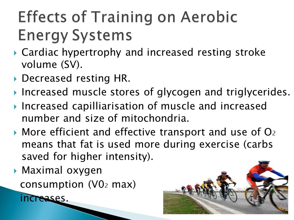 Effects of Training on Aerobic Energy Systems