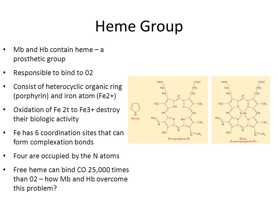 Heme Group Mb and Hb contain heme – a prosthetic group