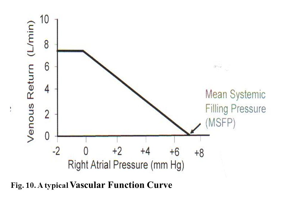 Fig. 10. A typical Vascular Function Curve