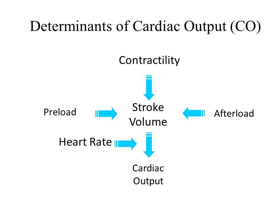 Determinants of Cardiac Output (CO)