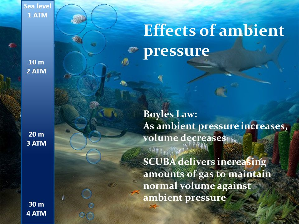 Effects of ambient pressure
