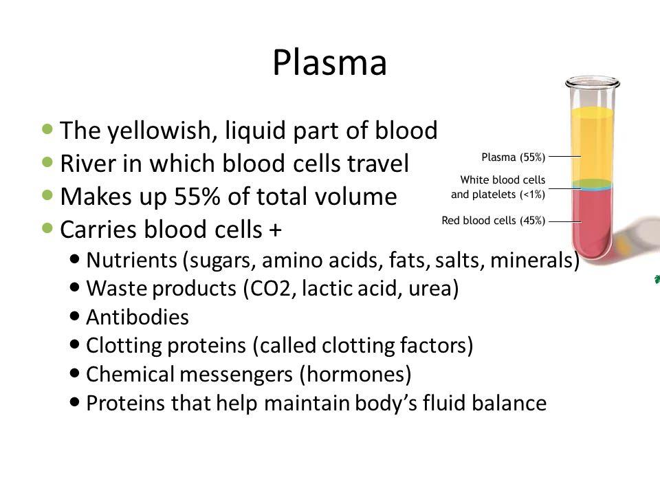 Plasma The yellowish, liquid part of blood