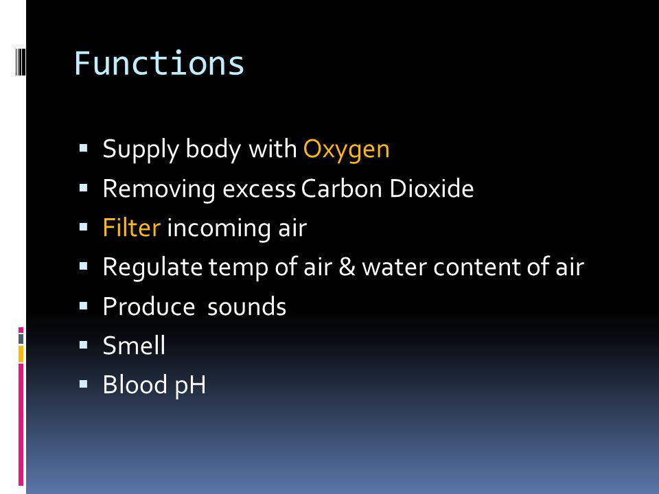 Functions Supply body with Oxygen Removing excess Carbon Dioxide