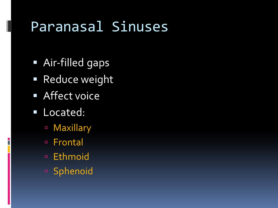 Paranasal Sinuses Air-filled gaps Reduce weight Affect voice Located: