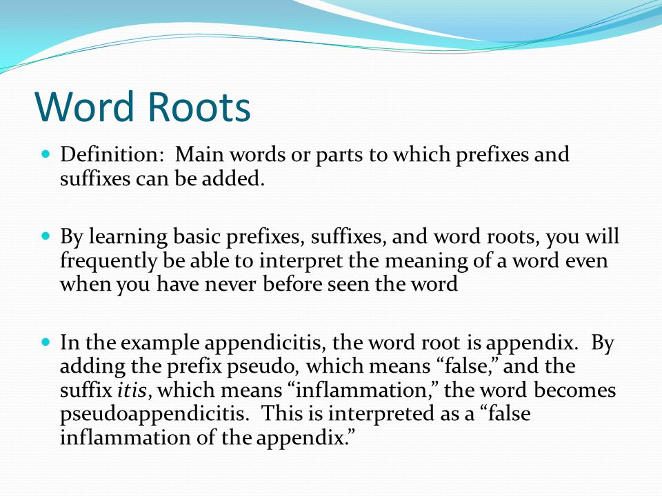 Word Roots Definition: Main words or parts to which prefixes and suffixes can be added.