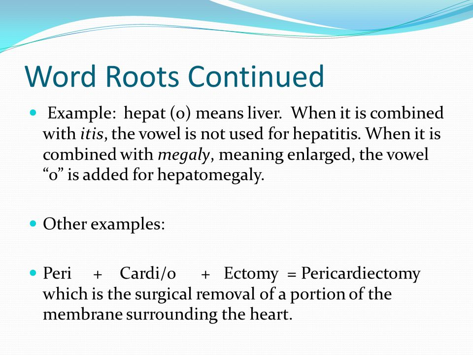 Word Roots Continued