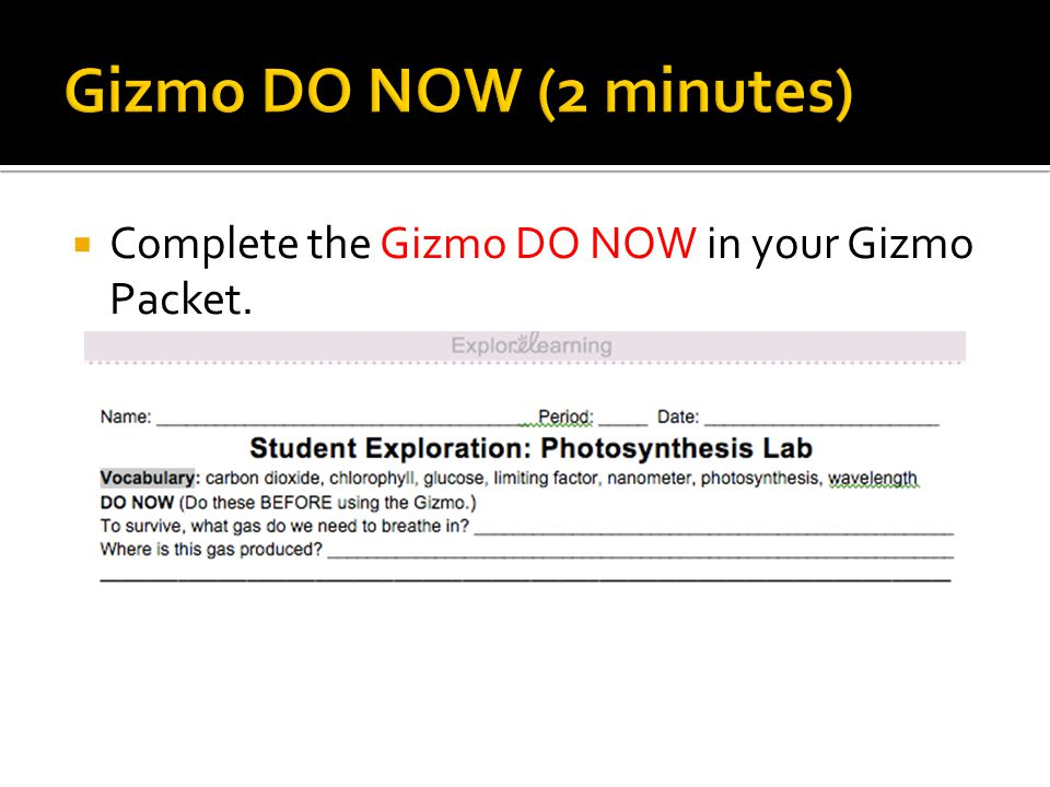 Gizmo DO NOW (2 minutes) Complete the Gizmo DO NOW in your Gizmo Packet. 7