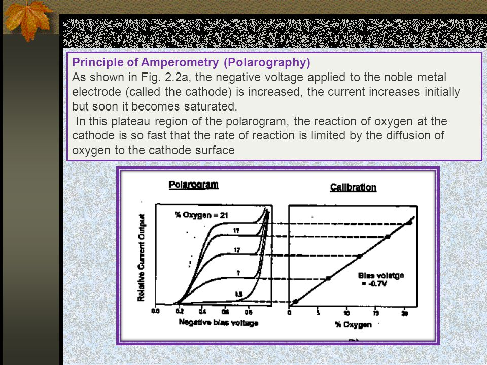 Principle of Amperometry (Polarography)