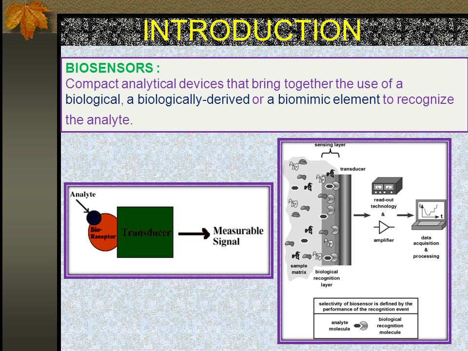 INTRODUCTION BIOSENSORS :