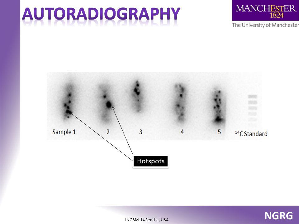 AUToradiography Hotspots