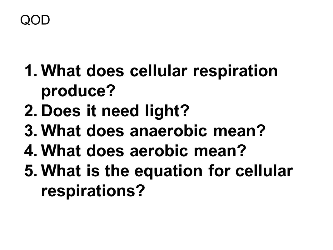What does cellular respiration produce Does it need light