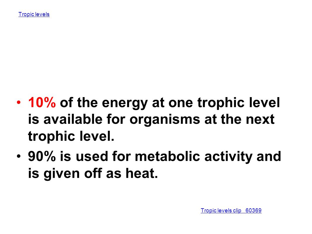 90% is used for metabolic activity and is given off as heat.