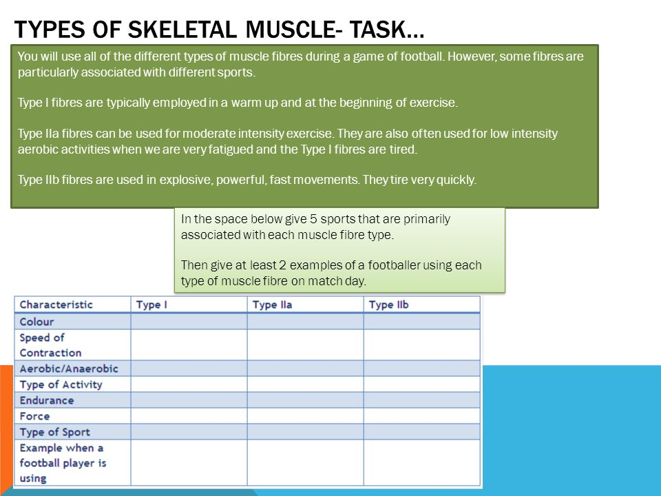 Types of Skeletal muscle- Task…