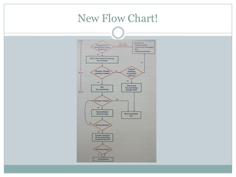 New Flow Chart!