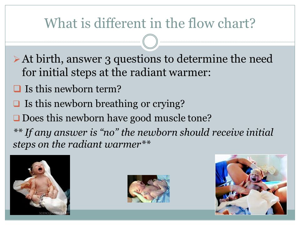 What is different in the flow chart