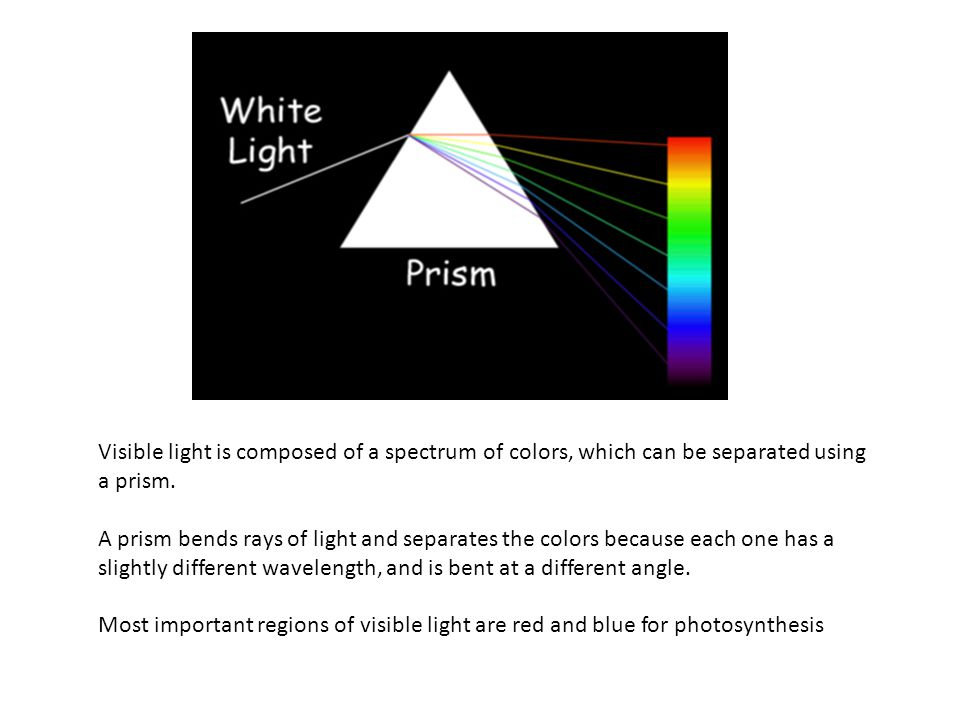 Visible light is composed of a spectrum of colors, which can be separated using a prism.