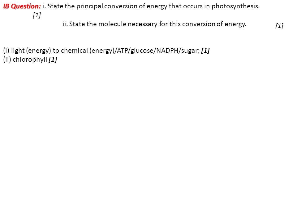 IB Question: i. State the principal conversion of energy that occurs in photosynthesis.