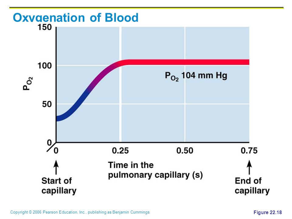 Oxygenation of Blood Figure 22.18