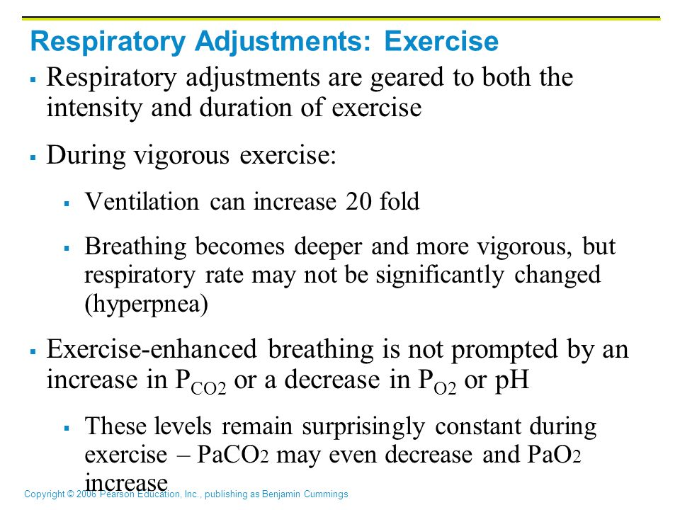 Respiratory Adjustments: Exercise