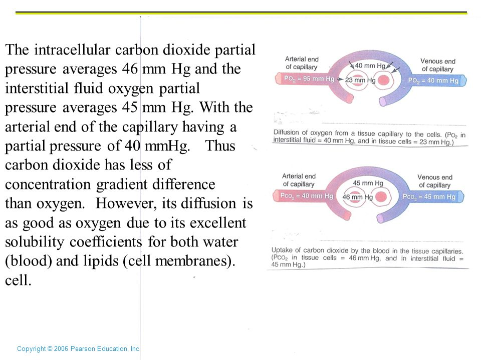 The intracellular carbon dioxide partial pressure averages 46 mm Hg and the