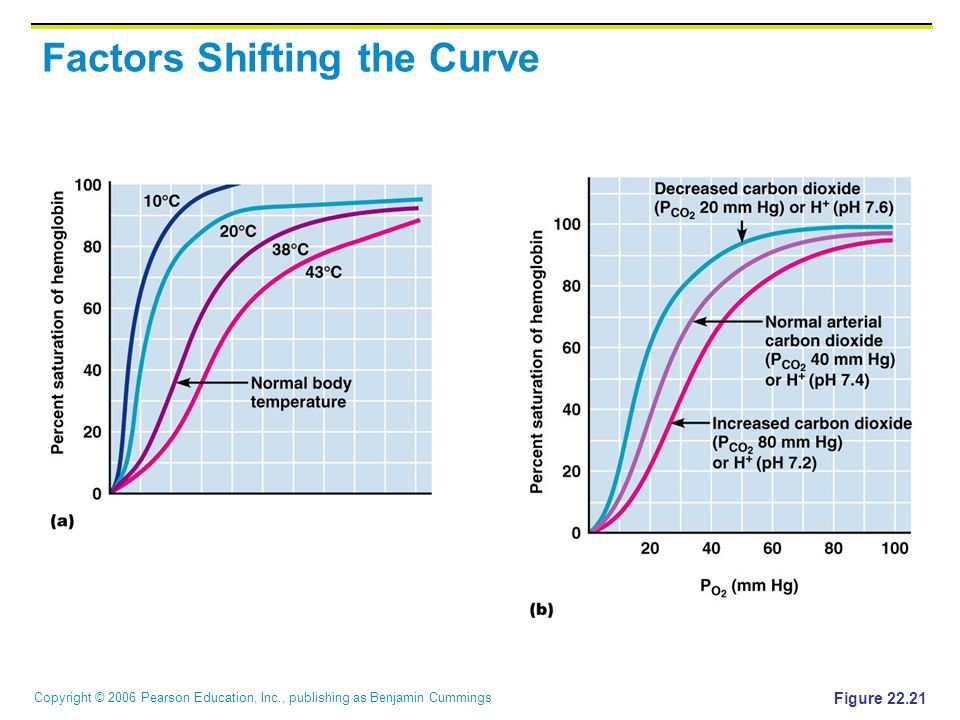 Factors Shifting the Curve
