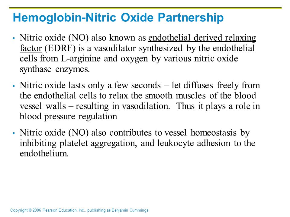 Hemoglobin-Nitric Oxide Partnership