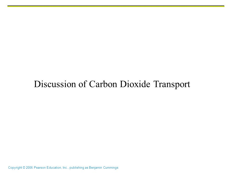Discussion of Carbon Dioxide Transport