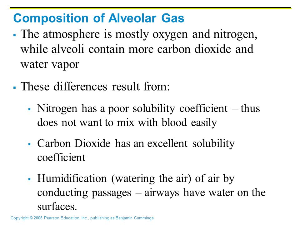 Composition of Alveolar Gas