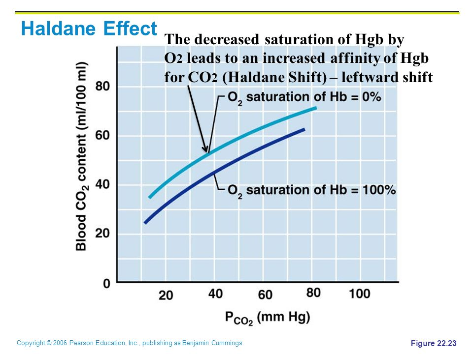 Haldane Effect The decreased saturation of Hgb by