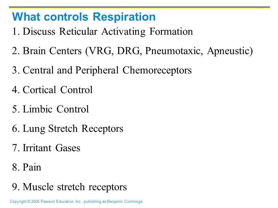 What controls Respiration