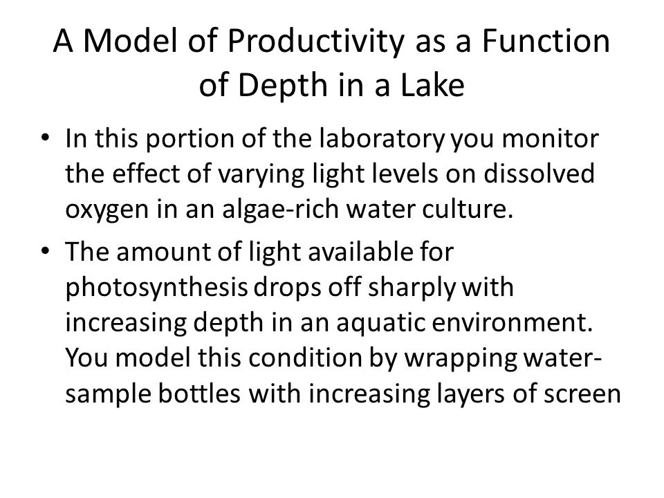 A Model of Productivity as a Function of Depth in a Lake