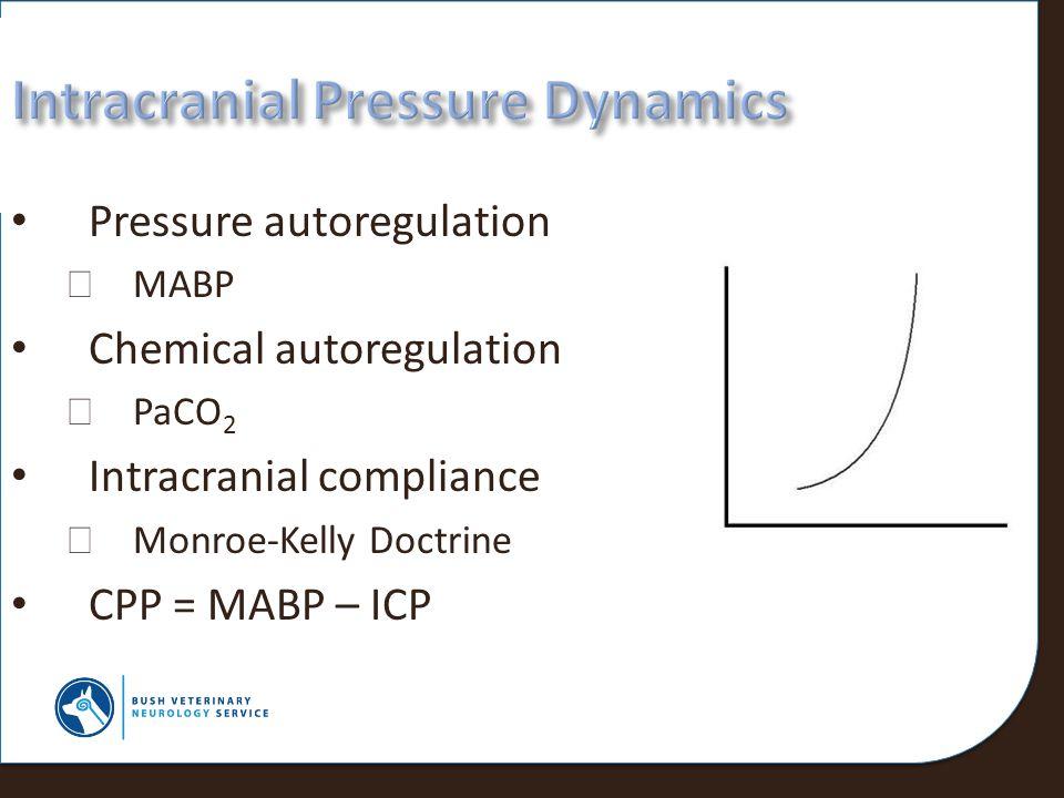 Intracranial Pressure Dynamics
