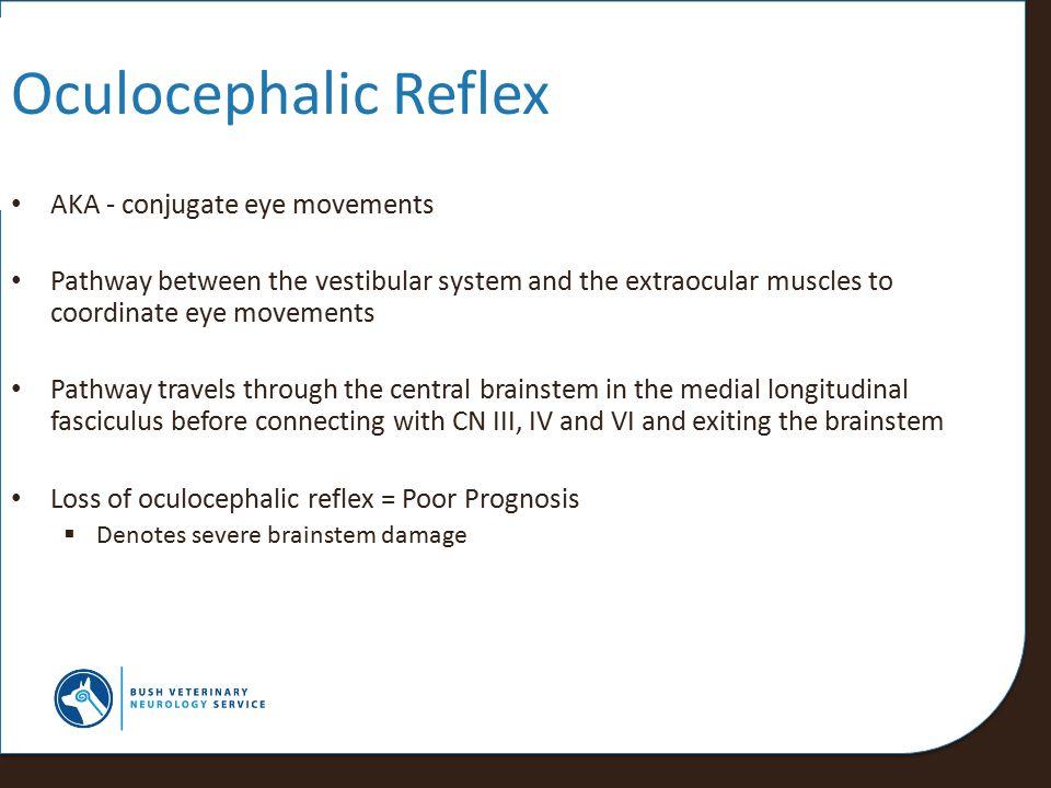 Oculocephalic Reflex AKA - conjugate eye movements